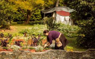 Five minutes with our Horticulturalist Jackie