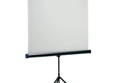 Data Projector Screen $50