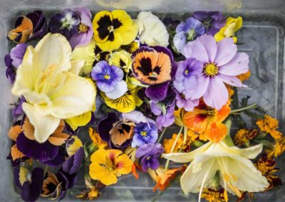 Edible-flowers