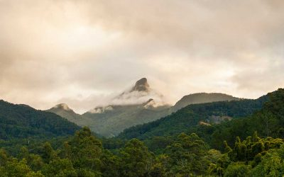 Visit Mount Warning